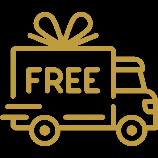 -free-deliver-icon